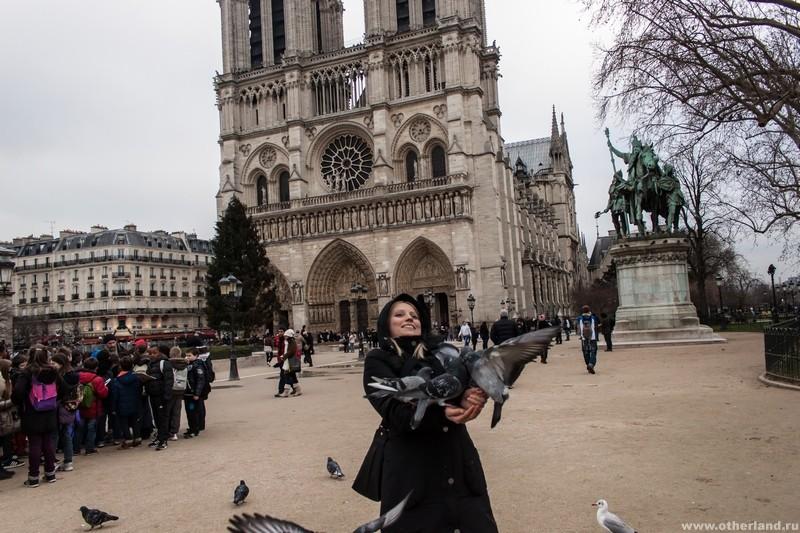 Парижские птицы